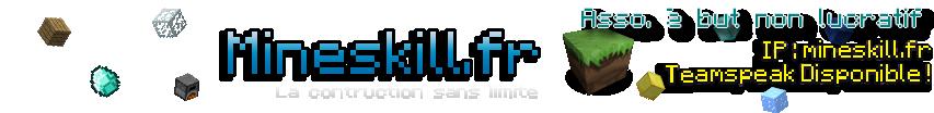 Mineskill.fr